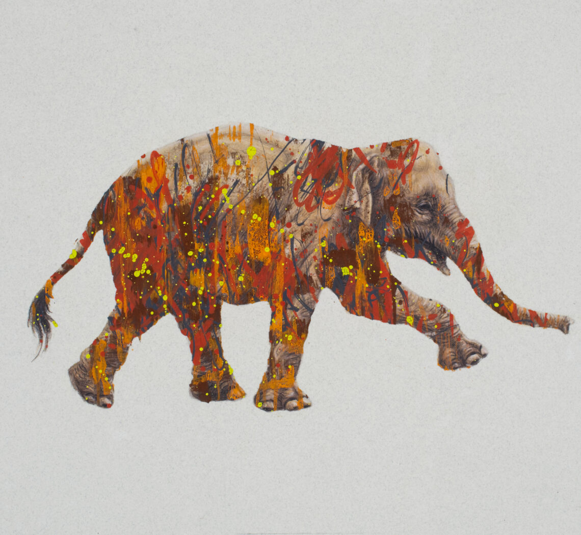 The Forest For The Trees-Asian Elephant Drawing