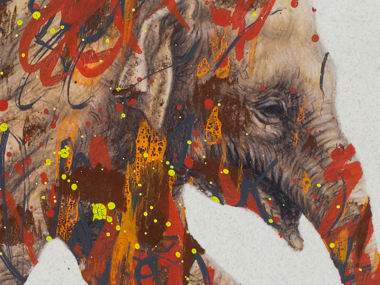 Asian-elephant-detail